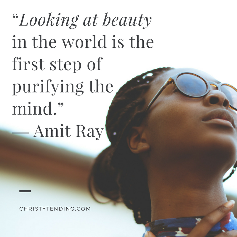 """""""Looking at beauty in the world is the first step of purifying the mind."""" ― Amit Ray 